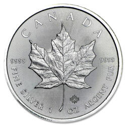 1 unze Maple Leaf Silbermünze - Masterbox 500 - 2016 - Royal Canadian Mint