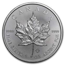 1 Unze Silber Maple Leaf - Monsterbox mit 500 Stück - 2020 - Royal Canadian Mint