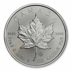 1 Unze Silber Maple Leaf - Monsterbox mit 500 Stück - 2021 - Royal Canadian Mint